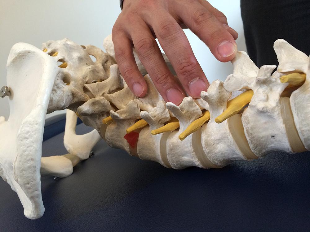 spine-check